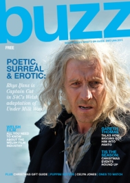 Buzz Rhys Ifans Cover